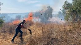 Pemukim Israel Serang Petani Palestina di Lembah Yordania