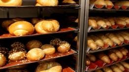 Tiga ribu pemuda Gaza berebut satu pekerjaan di pabrik roti