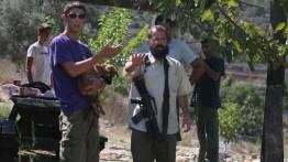 Pemukim Yahudi Tabrak Seorang Gadis Palestina di Tepi Barat