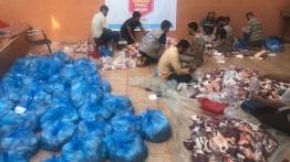DPU Daarut Tauhiid salurkan 87 ekor unta Qurban di Gaza Palestina