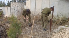 Israel lanjutkan pembangunan tembok pemisah di perbatasan Lebanon