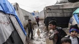 PBB desak pemberian hak penuh kepada anak-anak terlantar Suriah