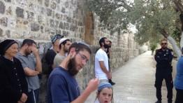 Lagi, pemukim Yahudi memaksa masuk Al-Aqsa