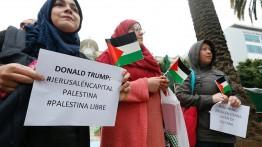 Warga Belanda, Australia dan New York gelar aksi bela Palestina