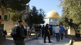 Puluhan warga Israel paksa masuk ke al-Aqsa untuk peringati hari besar Yahudi