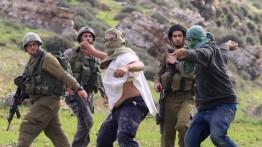 Pemukim Israel melempari rumah warga Palestina di Kota Tua Hebron