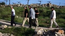Setelah balon dan layang pembakar, kini burung resahkan Yahudi Israel