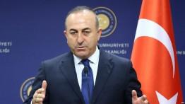 Çavuşoğlu: Turki akan kirim pasukan perlindungan ke Palestina