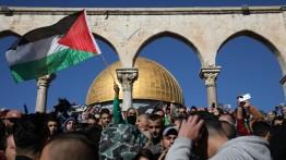 Selama 9 hari, 11 warga Palestina gugur dan lebih dari 3000 lainnya luka-luka dalam bentrok dengan pasukan pendudukan Israel