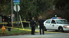 Tujuh orang tewas dalam kasus penembakan di New York