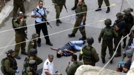 201 warga Palestina gugur dalam aksi mati syahid