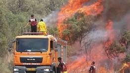 Kebakaran di permukiman zionis di perbatasan Gaza resahkan warga Israel