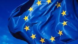 Uni Eropa paksa Arab Saudi untuk mengekspos aksi penangkapan aktivis HAM