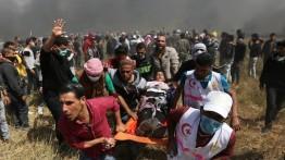 1 gugur dan 731 lainnya luka-luka dalam demonstrasi di Gaza Jum'at kemarin