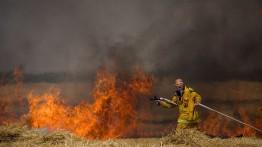 Dalam sehari, layang-layang pembakar memicu 24 kebakaran di Israel