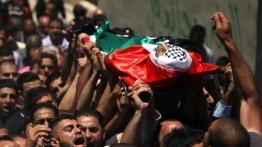 Sejak awal 2019, militer Israel bunuh 84 warga sipil Palestina