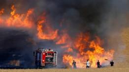 20 kebakaran di Israel akibat balon pembakar