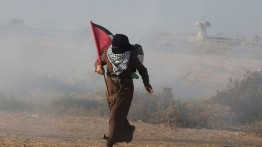Pasukan Israel melukai ratusan orang dalam demonstrasi mingguan di perbatasan Gaza