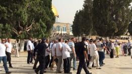 190 pemukim Yahudi menyerbu dan melakukan ritual Talmud Al-Aqsa
