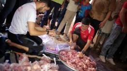 Turki sumbang 108 ekor sapi untuk 20.000 warga Gaza