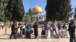 1000 pemukim Yahudi memasuki kompleks Al-Aqsha