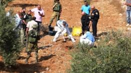 Israel menghambat panen zaitun di Tepi Barat