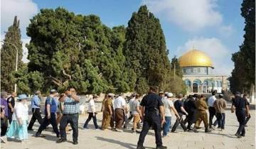 Peringati Hari Rosh Hashanah, ratusan warga Israel memasuki kompleks Al-Aqsa
