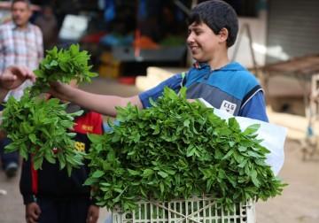 Senyum Bahagia dan Semangat Pagi Pedagang Sayur dan Buah di Gaza